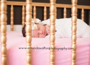 77429+Newborn+Family+Photographer