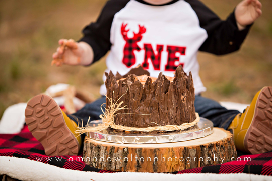 Cake-Smash-Photographer-Cypress