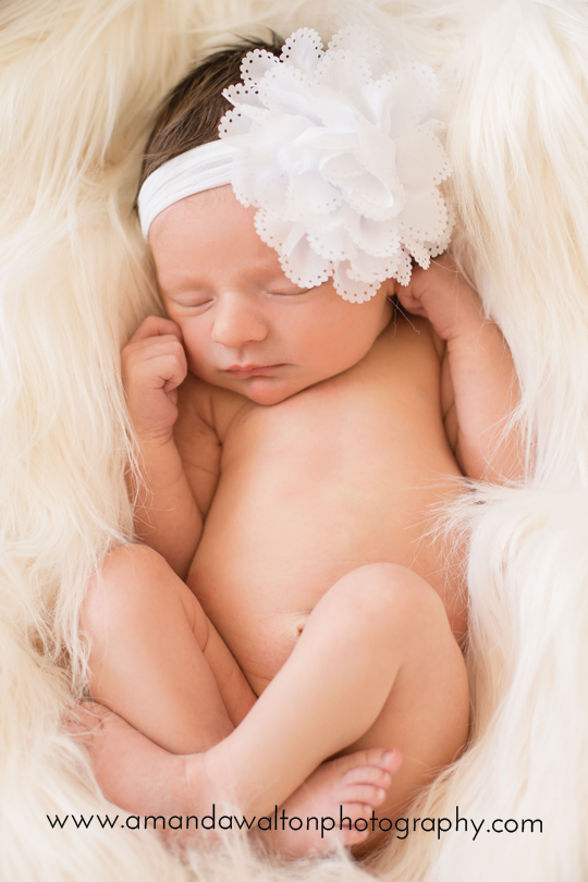 Cypress+Newborn+Photographer