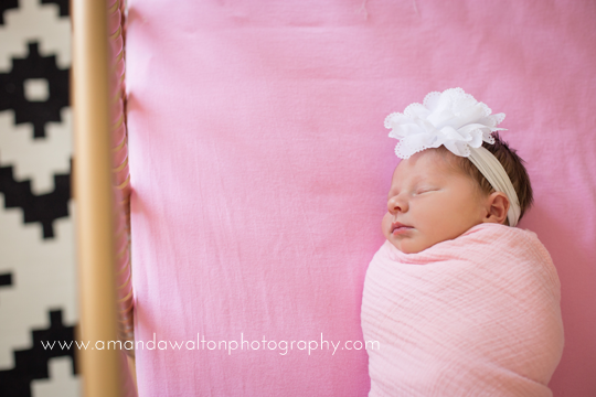 Cypress,TX+baby+photographer