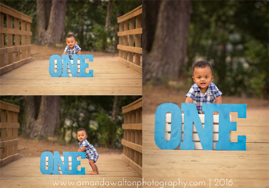 First-Birthday-Photographer-Cypress