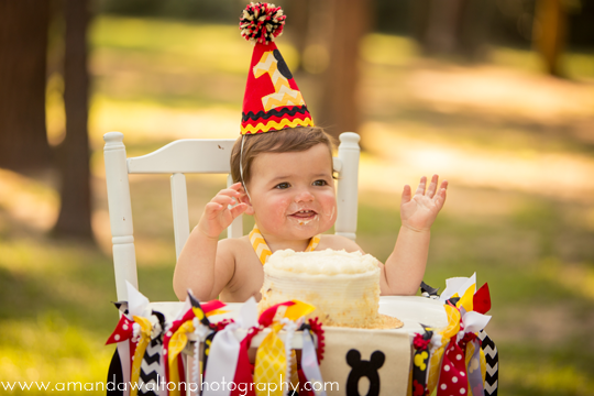 Houston-Cake-Smash-Photographer