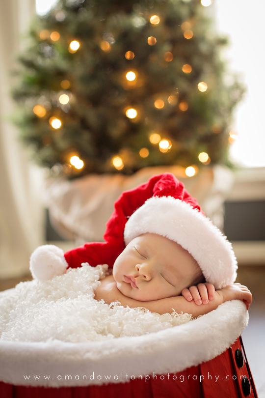 Newborn Christmas Pictures.Newborn Christmas Baby
